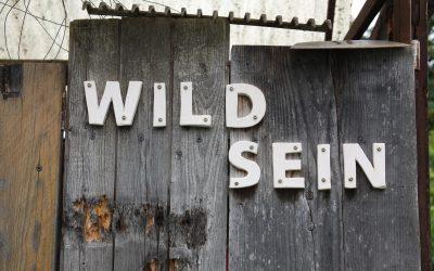 WILD SEIN – Marthas wilde Kräuter und Blumen