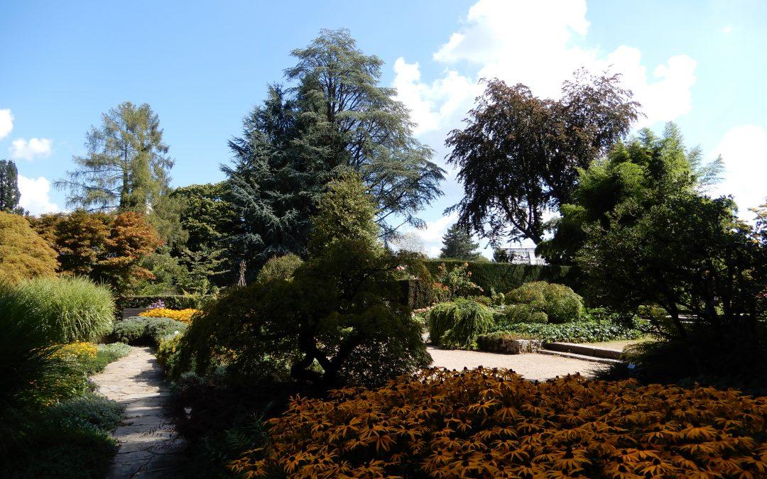 Botanischer Garten Linz – ein Spaziergang im Spätsommer